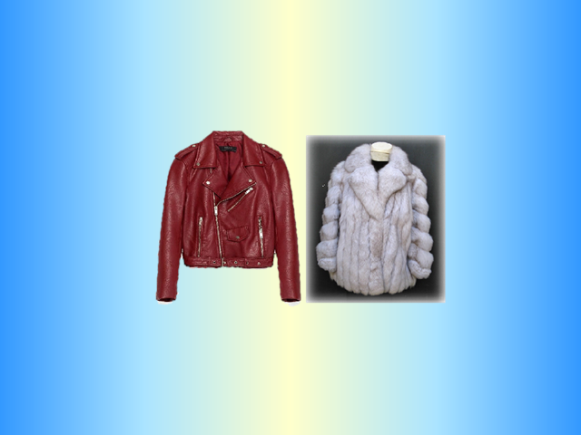 fur_and_leather